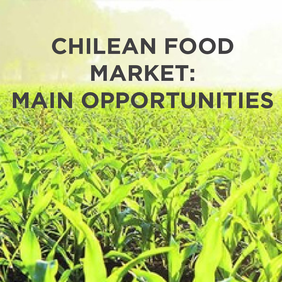 Chilean Food Market: Main Opportunities